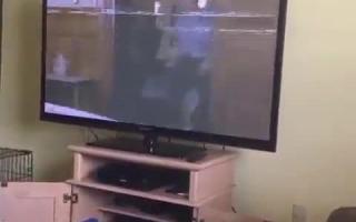 Violet York kriegt Arsch zerfickt die Muschi bekommen